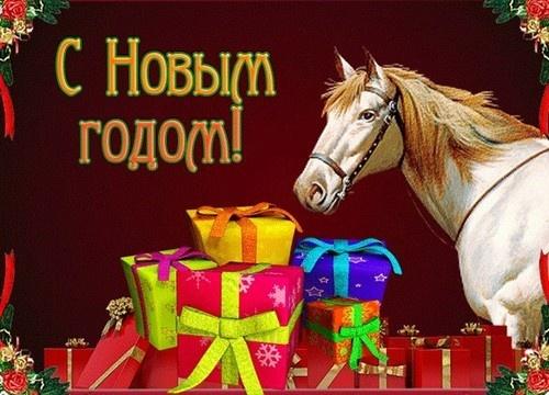 Статусы про год лошади